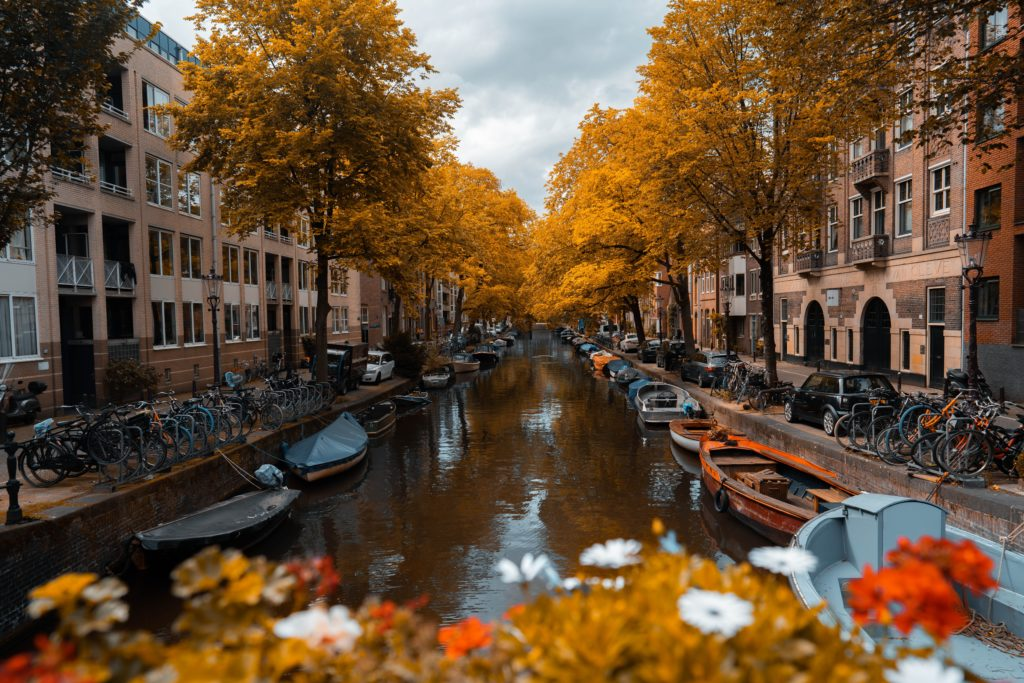 Autumn is a great time to visit Amsterdam. Here we take you through the best things to do in Amsterdam in Autumn and why you should visit now!