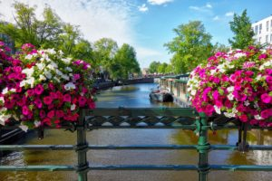 Top things to do in Amsterdam in May